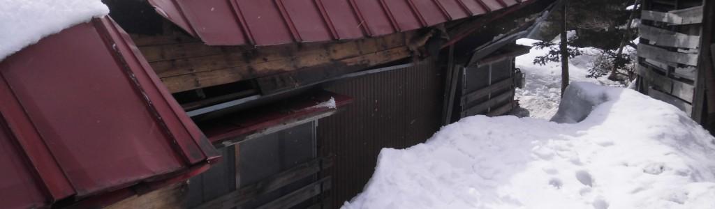 雪による被害です